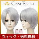 【送料無料】 CaseEden コスプレ ウィッグ シルバーグレー 銀灰色 銀髪 グレー ショート & ウィッグネット 2個セット