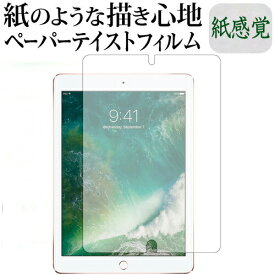 Apple iPad Pro 9.7インチ機種用 ペーパーライク 紙心地 反射防止 指紋防止 液晶保護フィルム メール便送料無料