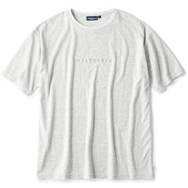 インターブリード Tシャツ INTERBREED Pile Resort S/S Tee パイル生地 半袖 ヘザーグレー M-XL IB19SS-26