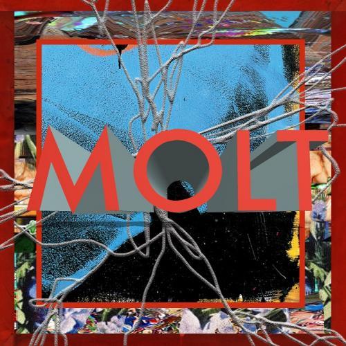 MOLT / MOLT