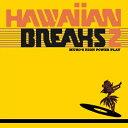 MURO / HAWAIIAN BREAKS 2