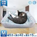 PPひんやりスクエアベッド M ペット ベッド ペットベッド マット 冷たい 春夏 涼しい 犬 猫 ぺんぎん あざらし【D】 …