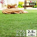 人工芝 ロール リアル人工芝 人工芝 IP-3025送料無料 人工芝 2m×5m 国産 人工芝生 芝生 芝マット アイリスオーヤマ …