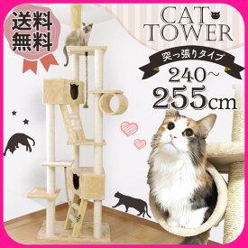 キャットタワー 突っ張り 猫顔ボックス付き QQ80037 (高さ:240-255cm ) キャットタワー 突っ張り 多頭 大型 おしゃれ ハウス付 爪とぎ おしゃれ 送料無料 【D】