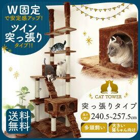 【最大400円OFFクーポン有】キャットタワー 突っ張り ツイン QQ80786 ブラウン キャットタワー 突っ張り 爪とぎ 多頭 大型 多頭飼い おしゃれ 猫タワー キャットタワー 大型猫 送料無料 【D】