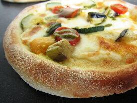 グリル野菜のピッツァ・ヴェルドゥーレ/みちのくナポリピッツァ/冷凍ピザ20cm