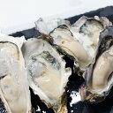 牡蠣 訳あり 送料無料 宮城産 殻付き牡蠣 4kg 生食