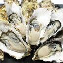 牡蠣 訳あり 送料無料 宮城産 殻付き牡蠣 6kg 生食