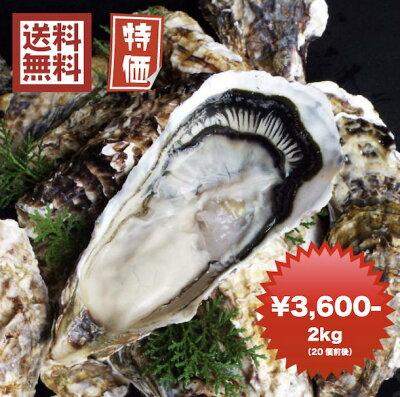 牡蠣 訳あり 送料無料 宮城産 殻付き牡蠣 2kg