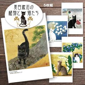 猫夢ポストカードセット5枚組 (夏目漱石の植物と猫たち)【猫 ポストカード】 【ポストカード 猫】 猫 花 文学