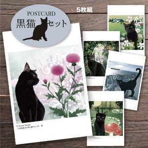 猫夢 ポストカードセット5枚組(黒猫セット)【猫 ポストカード】 【ポストカード 猫】 猫 花 文学 くろねこ