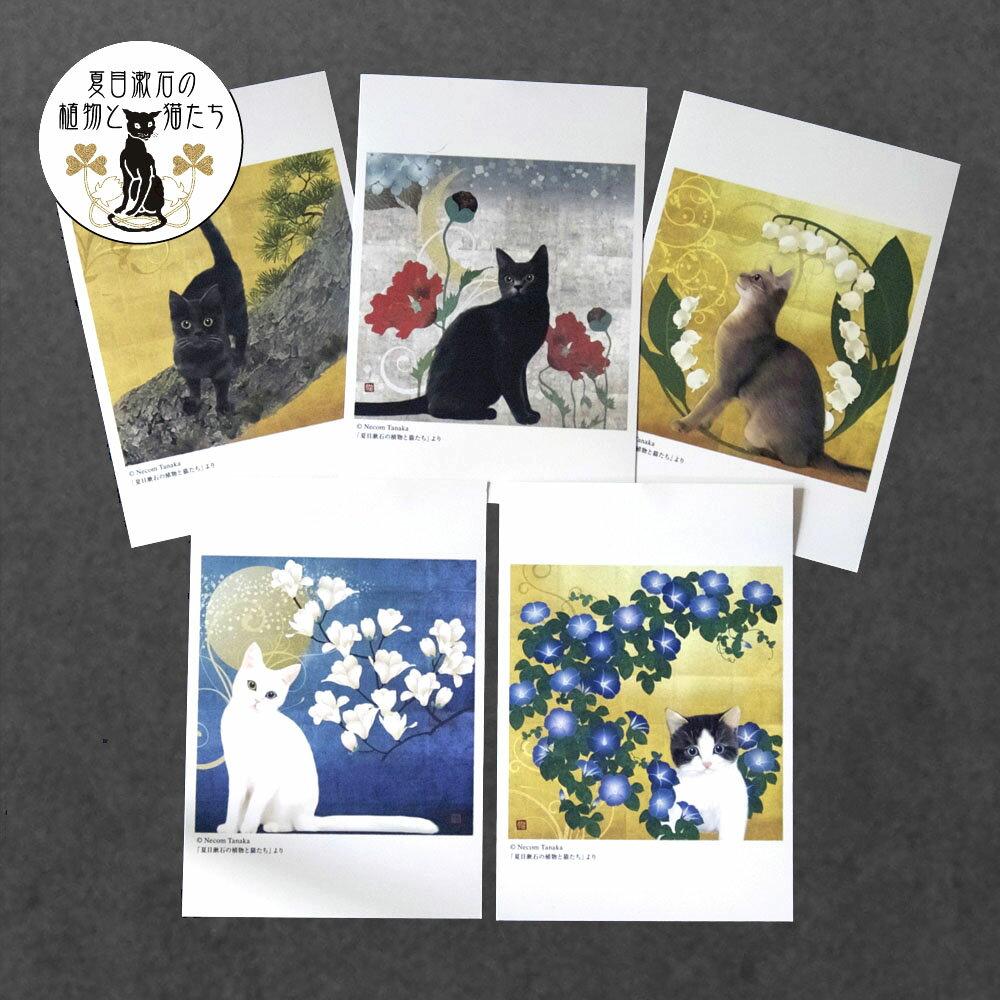 猫夢ポストカード5枚組(夏目漱石の植物と猫たち)【メール便送料無料】【猫 ポストカード】