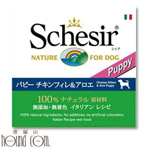 Schesir(シシア)犬用  チキン&アロエ缶150g 10缶セット ドッグ ゼリータイプ 犬用缶詰 ウェットフード