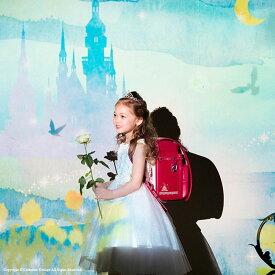 【予約品】日本製ランドセル 女の子 リトルシンデレラランドセル スタイリッシュノーブル 送料無料2020年度モデル A4対応 ピンク 茶色 水色 刺繍 学習院型 キューブ型 クラリーノ[YKKS2] ES6010SP