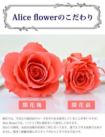 プリザーブドフラワー花束ローズブーケフラワーアレンジメント10本から