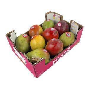マンゴー 4kg Mango
