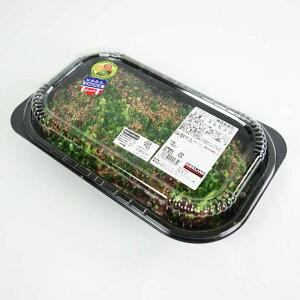 プルコギビーフ(韓国風焼肉) 未加熱商品 2kg前後