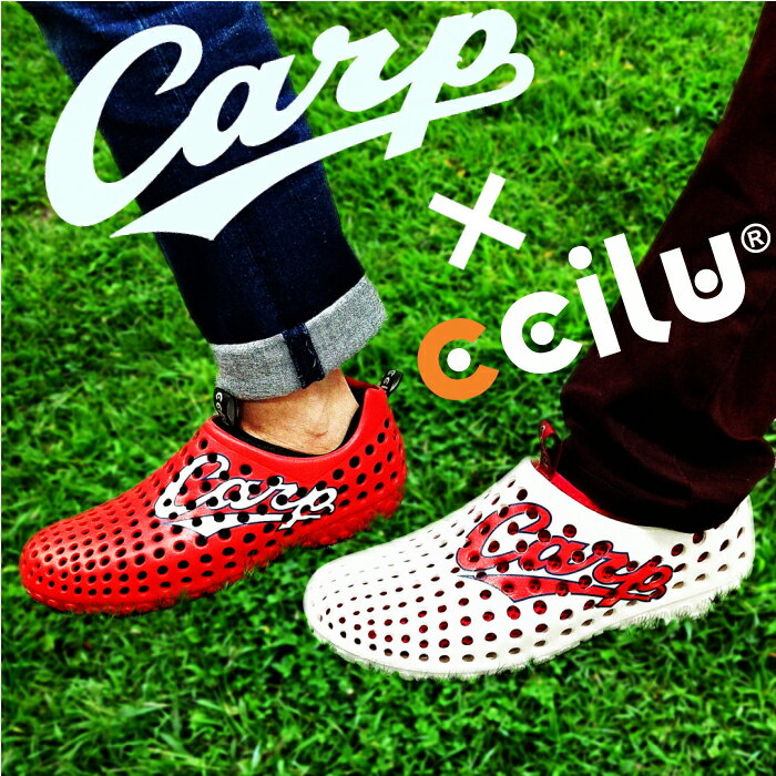 ccilu am2-carp 2017モデル 広島東洋カープ 公認 メンズ・レディース 22.0cm〜28.5cm 2色