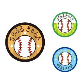 お名前キーホルダー 3個セット 野球ボール【代引・後払い不可 クロネコDM便】 (ネームホルダー なまえ 名前 ネームプレート こども キッズ 小学生 幼稚園 男の子)