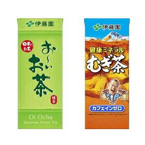 伊藤園 250ml×24本入(お〜いお茶 緑茶 健康ミネラルむぎ茶)紙パック テトラ おーいお茶 緑茶