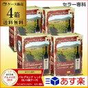送料無料 《箱ワイン》バルデモンテ レッド 3L×4箱ケース (4箱入)赤ワインセット ボックスワイン BOX BIB バッグイン…
