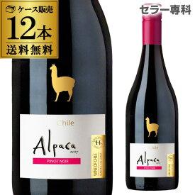 アルパカ ピノ ノワール サンタ ヘレナ 750ml 12本入ケース チリ セントラルヴァレー ミディアムボディ 赤ワイン GLY