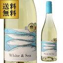 【最大888円クーポン】送料無料 ホワイト&シー 750ml フランス ガスコーニュ 白 辛口 白ワイン 長S