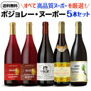 【誰でもワインP5倍 10/25限定】【予約】送料無料 ボジョレー ヌーボー5本セット2020高品質ヌーヴォーだけ厳選ワイン …
