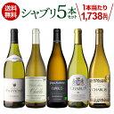 (予約) 1本当たり1,738円(税込) 送料無料 シャブリ5本 セット 750ml 白 白ワイン 辛口 飲み比べセット オーガニック …