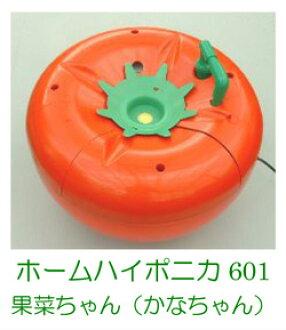 用homuhaiponika 601型水耕栽培配套元件西红柿栽培超人气!