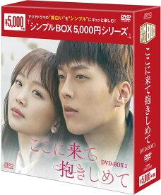 ここに来て抱きしめてDVD-BOX1(5枚組)<シンプルBOX 5,000円シリーズ>