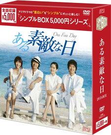 ある素敵な日 DVD-BOX <シンプルBOX 5,000円シリーズ>(6枚組)
