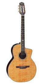 【送料無料】Takamine 《タカミネ》 DMP670NC VN アコースティックギター(エレガット) [DMP-670NC]