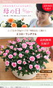 【母の日】天皇杯受賞!送料無料★エコロ・ワンダフル!約50センチの大迫力 感謝の気持ちを届けるバラの鉢植え 花色指定OK 母の日 ギ…