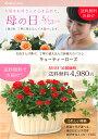 【母の日】送料無料★キューティーローズ!丁寧に植え込んだ、感謝の気持ちを届けるバラの鉢植え♪