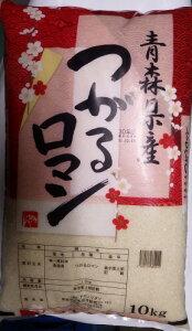 青森県産つがるロマン10kgナカノワタリ
