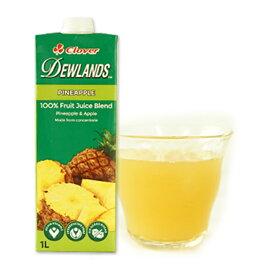 デューランド パイナップルジュース1L×1本[常温/全温度帯]【3〜4営業日以内に出荷】