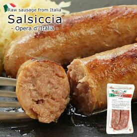 イタリア サルシッチャ 10本セット(2本入×5P)[冷凍][賞味期限:2021年2月17日]【3〜4営業日以内に出荷】【送料無料】