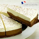 フランス産 カプチーノタルトケーキ1ホール(12カット)[冷凍][賞味期限:お届け後1か月以上]【3〜4営業日以内に…