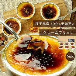 【送料別】種子島産100%安納芋のクレームブリュレ内祝いギフトプレゼントスイーツ秋スイーツ
