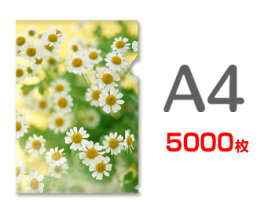 A4クリアファイル印刷5000枚(単価21.9円)