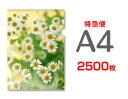 【特急便】A4クリアファイル2500枚(単価34.6円)