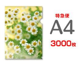 【特急便】A4クリアファイル3000枚