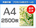 A4クリアファイル印刷2500枚(単価27円)