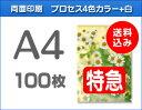 【特急便】A4クリアファイル100枚(単価290円)