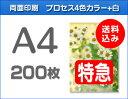 【特急便】A4クリアファイル200枚(単価167.5円)
