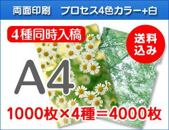 A4クリアファイル印刷1000枚×4種=4000枚