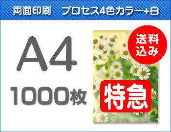 【特急便】A4クリアファイル1000枚(単価54.5円)