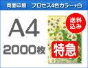 【特急便】A4クリアファイル2000枚(単価39円)