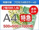 【特急便】A4クリアファイル500枚+500枚=1000枚